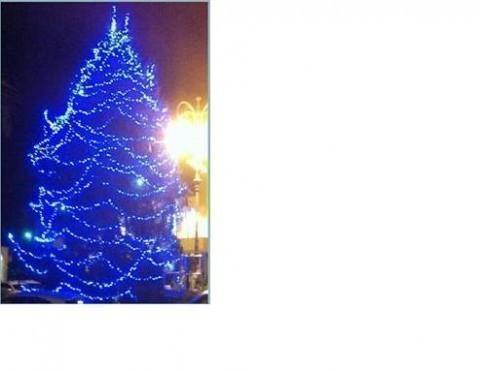 natale_2013_rapallo_albero_blu